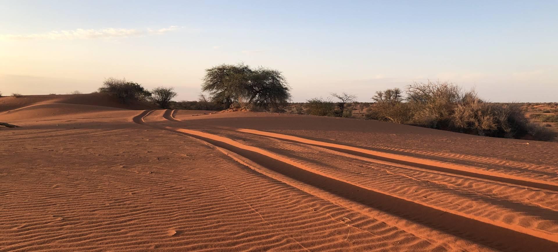 Nam desert